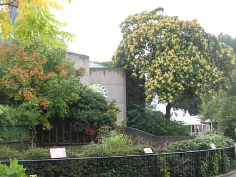 Зоопарк в Лондоне фото 3.