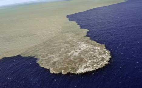 извержение вулкана на тенерифе