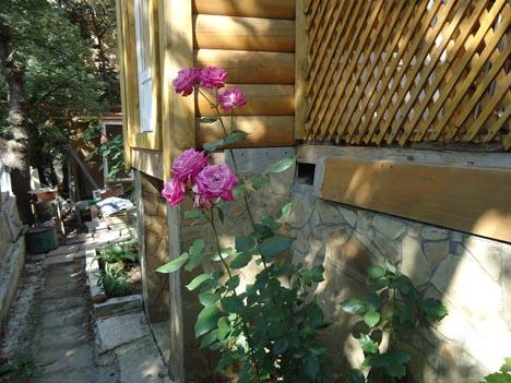 частные дома под ключ в алупке