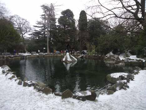 воронцовский парк пруд