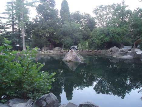 алупка фото воронцовский парк