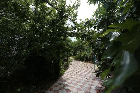 алупка венера гостевой дом